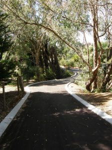 rural asphalt driveway